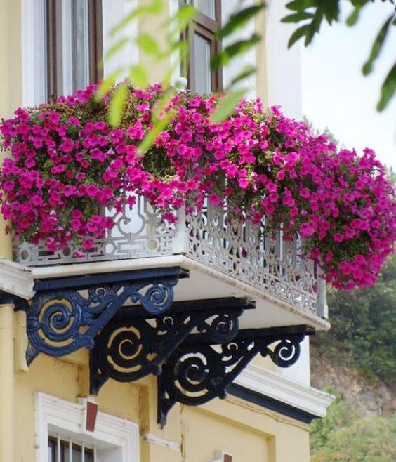Ban công ngập tràn hoa