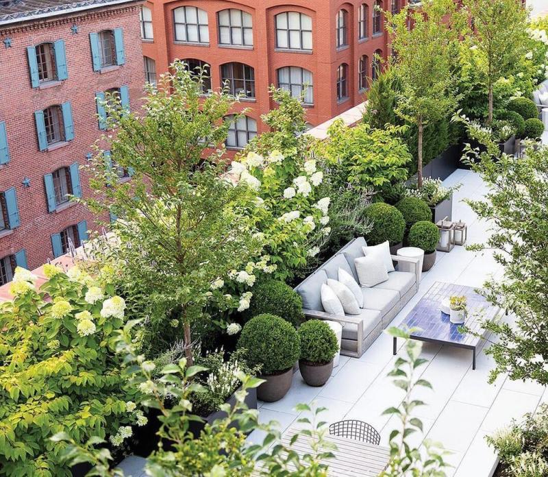 Ban công hiện đại, trang trí kết hợp cây xanh