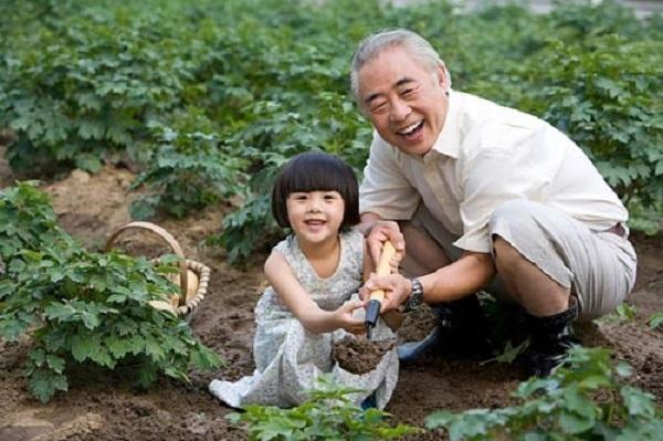 cụ già hạnh phúc khi trồng cây