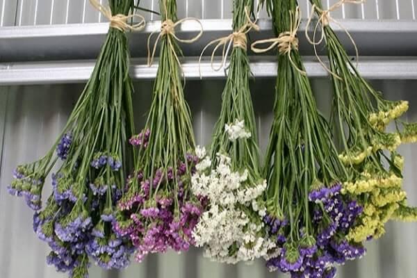 treo hoa làm hoa khô