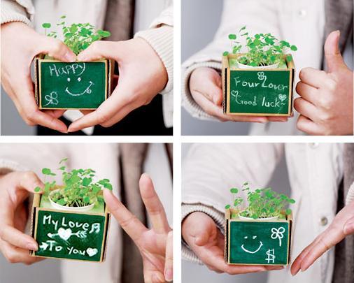 quà tặng cây xanh