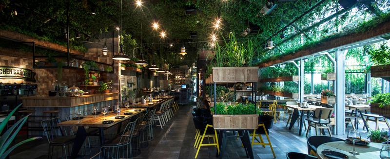 lựa chọn cây xanh cho quán cà phê