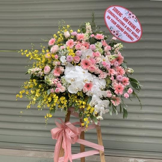 hoa hồng chúc mừng khai trương đẹp