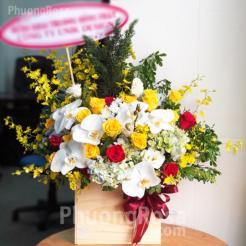 Lẵng hoa Sinh nhật Hoa Lan kết hợp Hoa hồng, Cẩm tú cầu