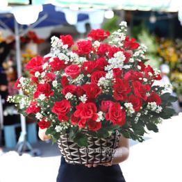 Hoa SN tình yêu màu nắng