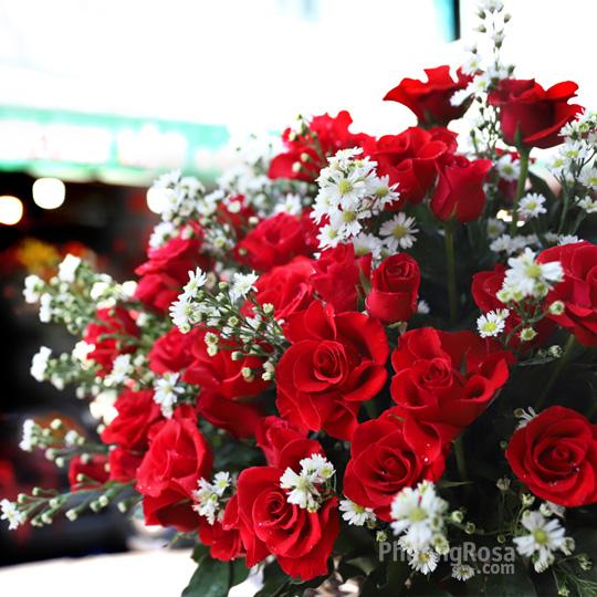 Thumb Hoa SN tình yêu màu nắng